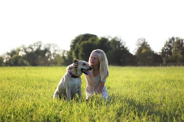 Your Personality Affects Your Dog's Behavior